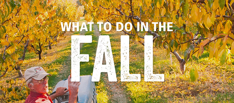 Yakima Valley Trip Ideas in the Fall